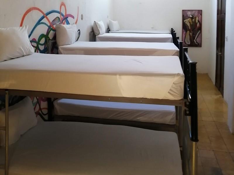 Standard Shared Dorm