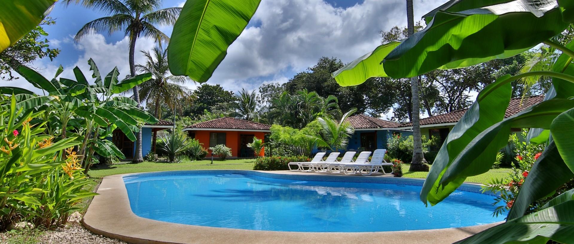 Wonderful tropical garden.