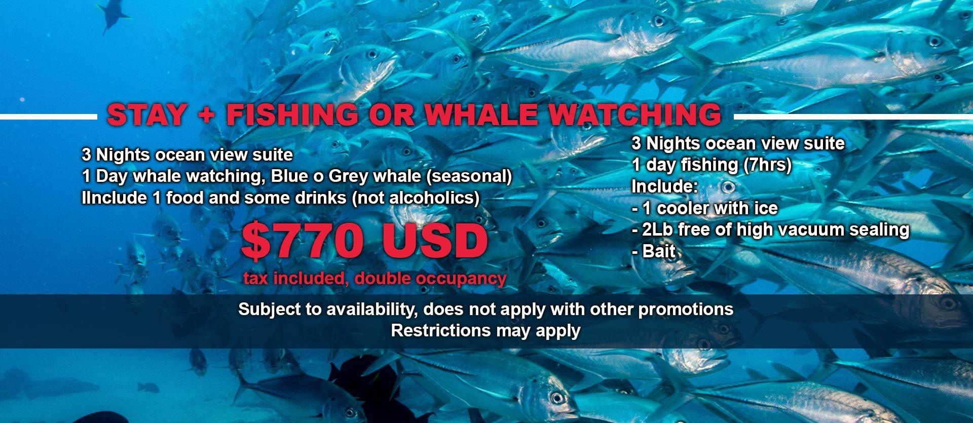 Paquete de pesca o Avistamiento